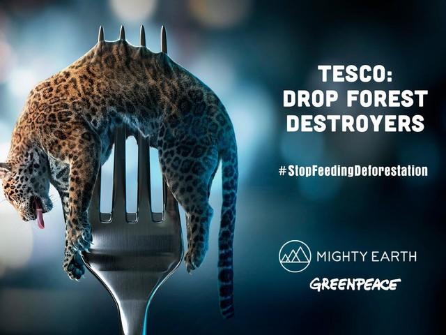 I supermercati del Regno Unito al Brasile: la nuova proposta di legge minaccia l'Amazzonia