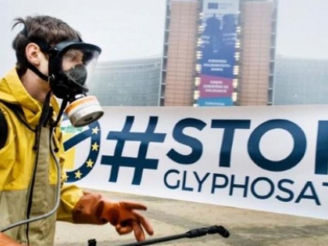 La Monsanto detta legge: avremo il glifosato per altri 5 anni