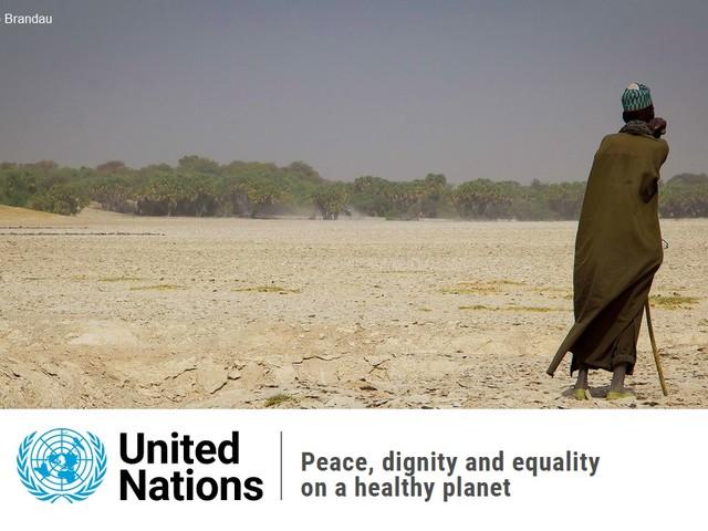 The State of the Planet: «È tempo di fare pace con la natura»