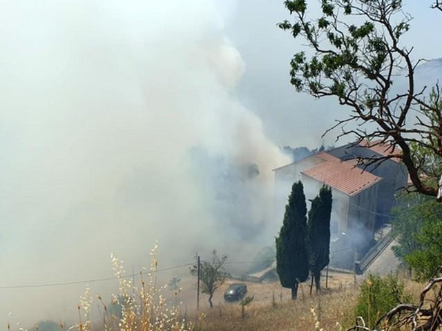 Incendi nel palermitano, distrutti ettari di vegetazione