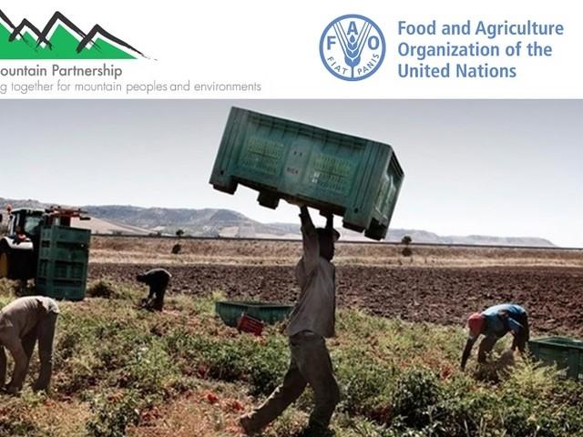Il giusto prezzo per il cibo contro il caporalato, per l'ambiente e per le aziende agricole