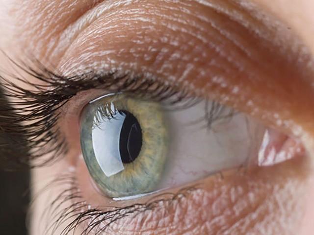 Creato un occhio artificiale in 3D con cellule umane: è in grado di ammiccare