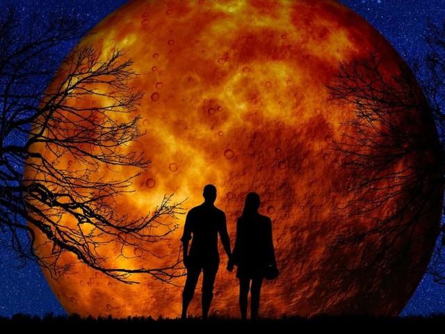 L'oroscopo settimanale dal 18 al 24 novembre, 2^ sestina: pagelle, Sagittario 'nove'