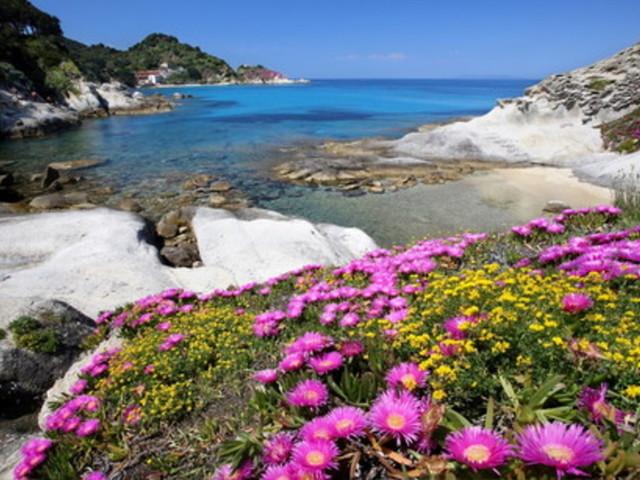 Capo Sant'Andrea, la perla dell'Isola d'Elba