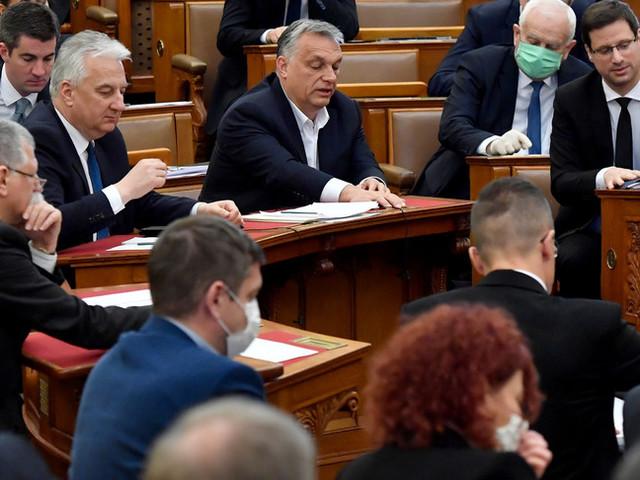 Pieni poteri a Orban per combattere l'epidemia