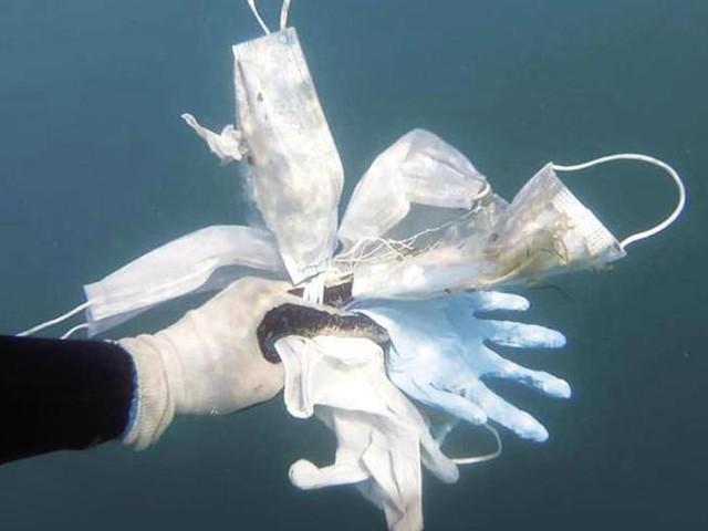 «Inquinamento da plastica, ora bisogna battere la mania del monouso»