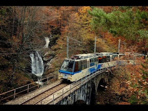 Da Domodossola a Locarno la Ferrovia Vigezzina Centovalli tra i colori dell'autunno