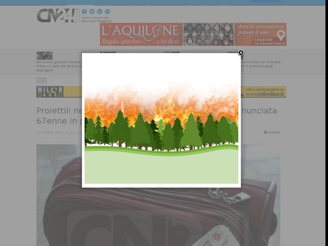Proiettili nella valigia all'aeroporto di Lamezia: denunciata 67enne in partenza per Bergamo