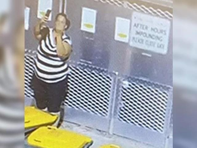 Donna si scatta un selfie mentre abbandona il cane al rifugio: la storia di Staunch