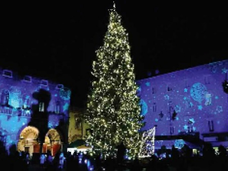 Mercatino di Natale, Rovereto ci crede «Ma l'Apss ci dia il protocollo promesso»