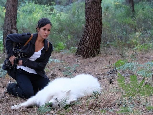 Cast e personaggi de La Caccia Monteperdido su Canale5 con Megan Montaner protagonista: anticipazioni 10 e 17 novembre