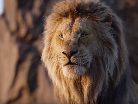 Box Office Italia: Il Re Leone supera i 22 milioni