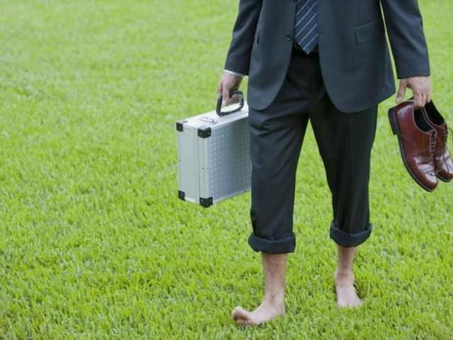 Le 10 professioni 'green' del futuro per trovare lavoro