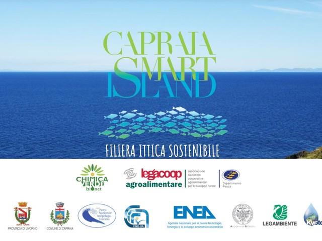 Capraia Smart Island filiera ittica sostenibile: i vincitori dei due concorsi