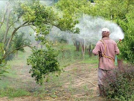 Un'elevata esposizione ai pesticidi danneggia l'olfatto degli agricoltori