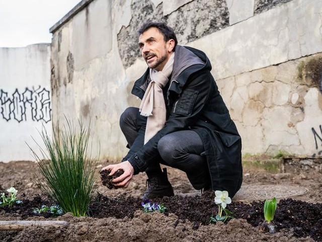 Verdi, solo in Italia sono bonsai: offuscati dalle 5 Stelle di Grillo