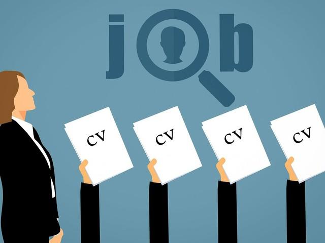 Il layout del tuo CV: consigli pratici per realizzare un curriculum perfetto