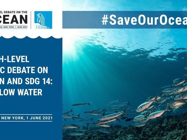 L'umanità non potrà sopravvivere se non salva gli oceani. «Semplicemente nessuno scenario»