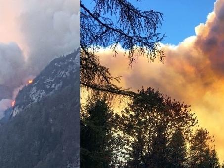 Gigantesco incendio, in fiamme il bosco di San Lucano, oscurato il cielo /Foto /Video