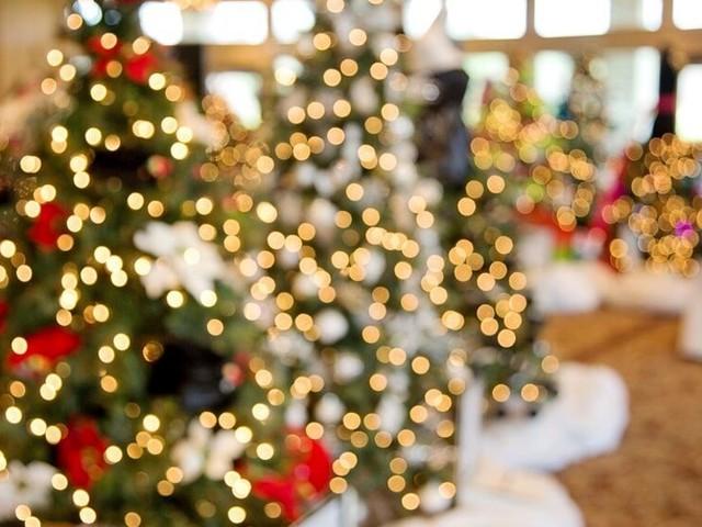 Natale ecologico: come addobbare casa rispettando l'ambiente