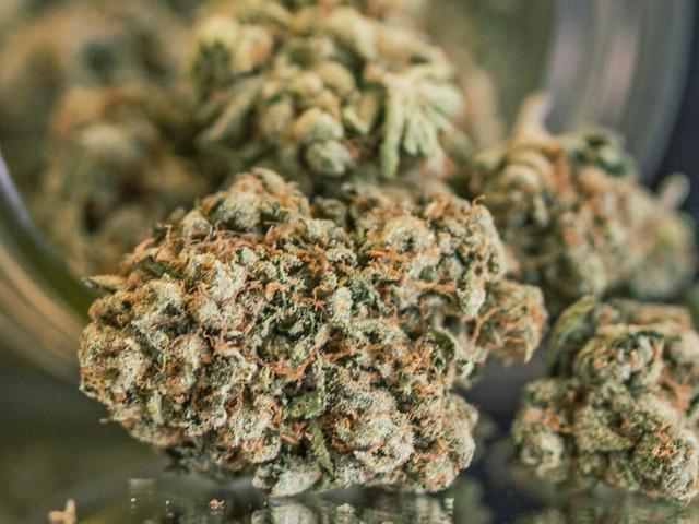 Un'altra ricerca assolve la marijuana. Chi fuma ha punteggi più alti nei test di memoria
