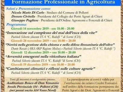 Formazione professionale in agricoltura, l'incontro al Bosco di Don Venanzio