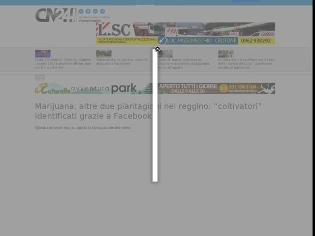 """Marijuana, altre due piantagioni nel reggino: """"coltivatori"""" identificati grazie a Facebook"""