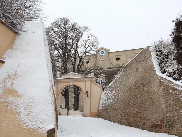 Strage di nobili in un castello Austria,arrestato un conte