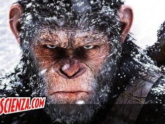 Cinema: È ufficiale, la Disney riporta in azione Il pianeta delle scimmie, ma come?