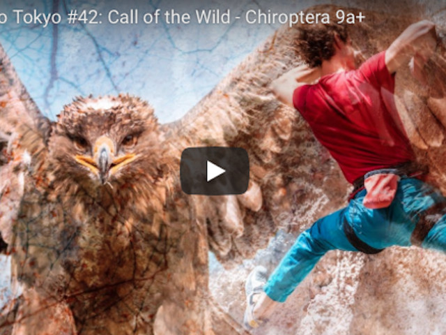 VIDEO. Adam Ondra. Road to Tokyo #42: Call of the Wild – Chiroptera (9a+)
