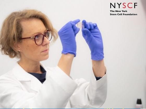 Donne e scienza: sistematicamente sottorappresentate ai vertici delle istituzioni scientifiche