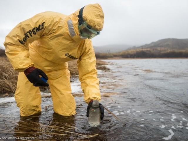 Dopo le prime analisi continua il mistero sul disastro ambientale in corso in Kamchatka