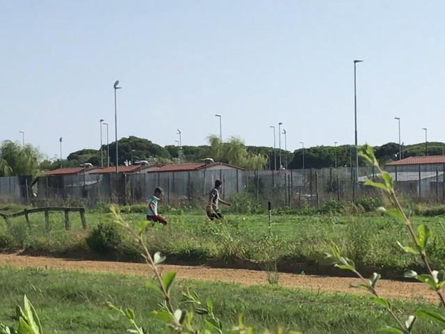 Paura per dipendenti e cavalli: così i rom tengono in ostaggio l'ippodromo
