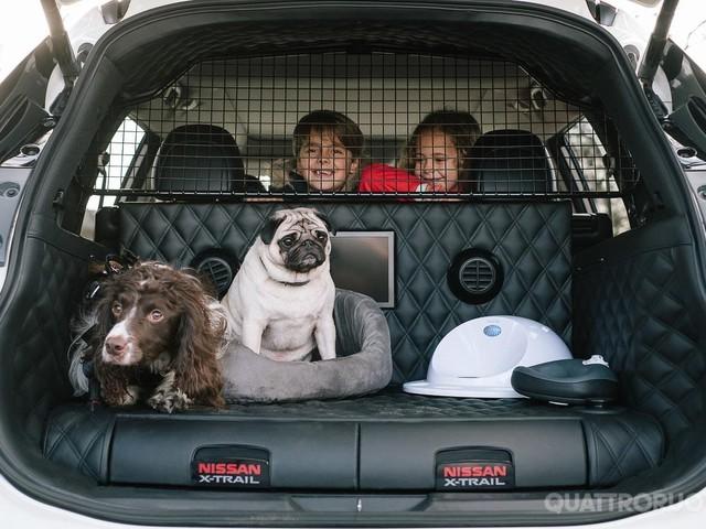 Cani e gatti - Quel che serve sapere per farli viaggiare bene in auto