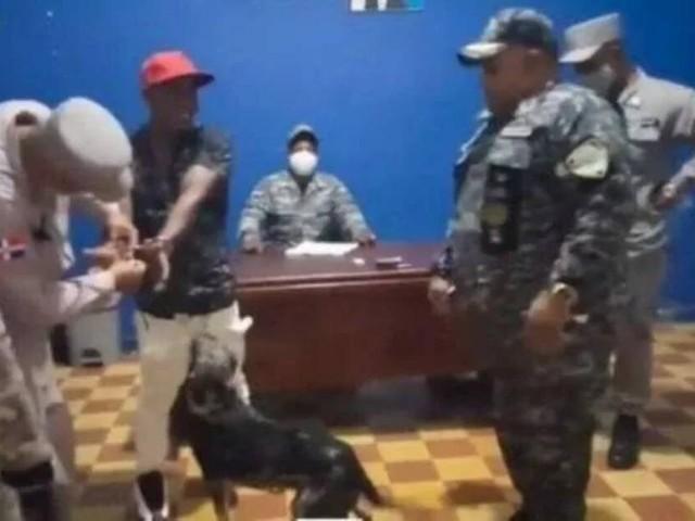 Cane alla stazione di polizia: rivuole indietro il suo amico umano