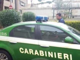 Carne sequestrata messa in vendita nel Vibonese Denunciate due persone in una macelleria