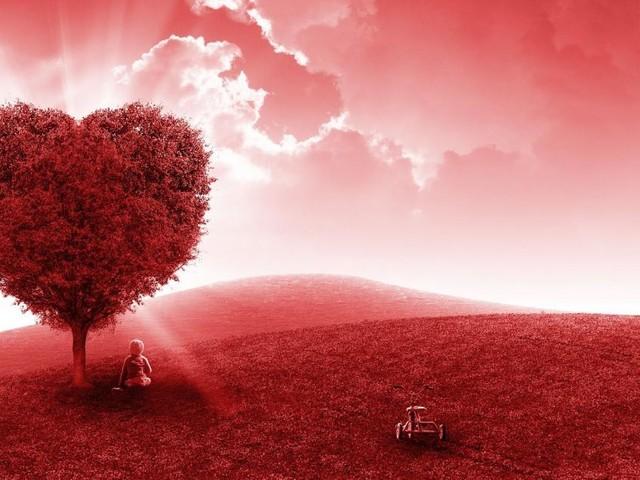 Oroscopo sull'amore di novembre: flirt per i Pesci, Cancro passionale