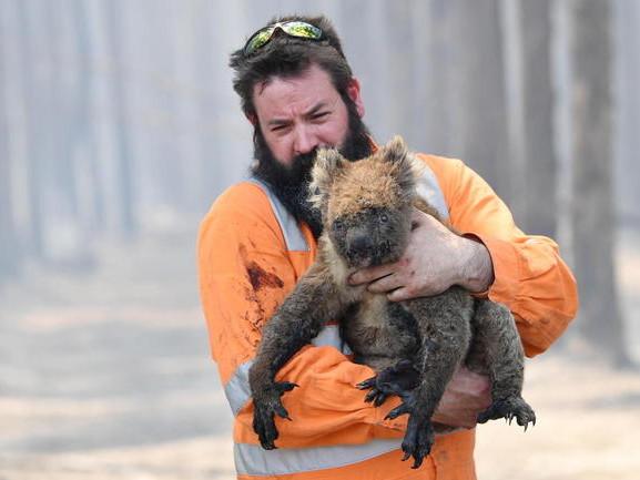 Australia: arrestati 180 piromani fermati anche 40 minorenni devastati 7 milioni di ettari