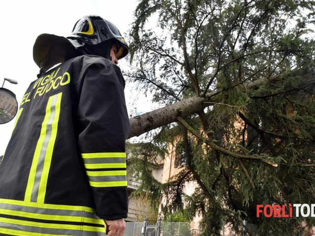 La Romagna sferzata dal Garbino: decine di interventi dei Vigili del Fuoco