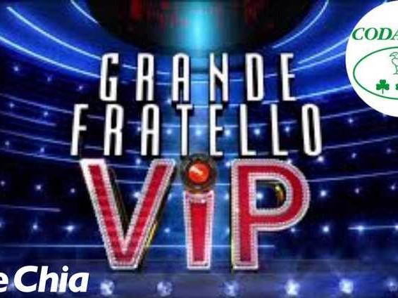 'Gf Vip 5', il Codacons invoca la chiusura anticipata del reality di Alfonso Signorini: ecco perché