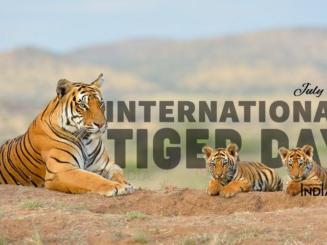 Giornata mondiale della tigre: in Asia più di 12 milioni di trappole minacciano i grandi felini (VIDEO)