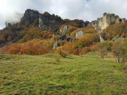Archeologia: nel Reggiano nasce parco sull'Età del Bronzo
