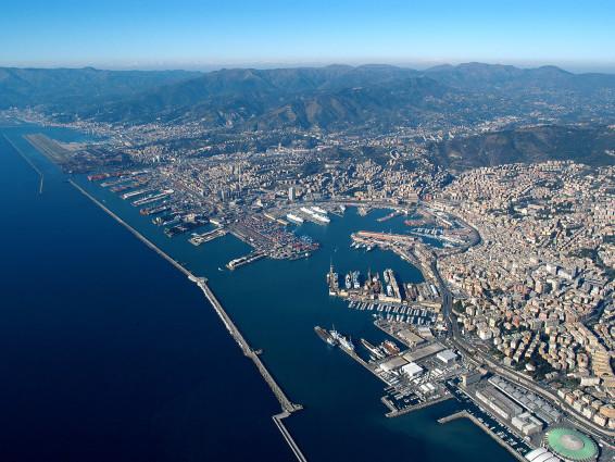 Orche nel porto a Genova: il cucciolo sembra non dar segni vita