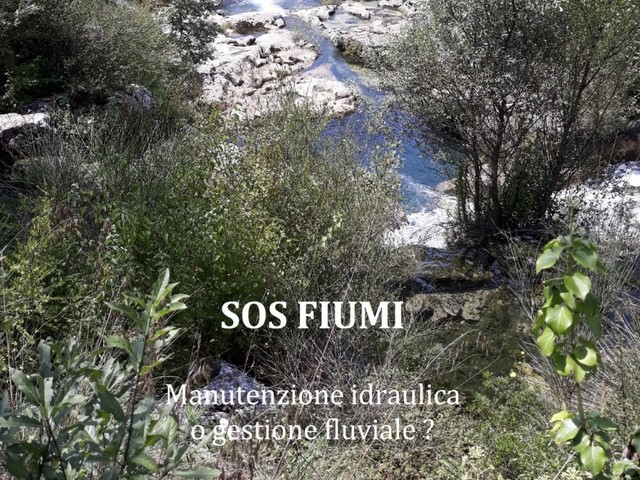 World rivers Day, Wwf: SOS fiumi in Italia