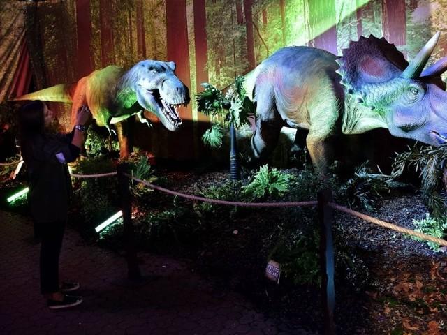 """Milano, trenta dinosauri """"rivivono"""" nella giungla preistorica della Fabbrica del Vapore"""