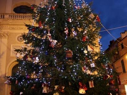 Imperia: niente albero di Natale in piazza San Giovanni? No, quest'anno gli alberi saranno ben due!