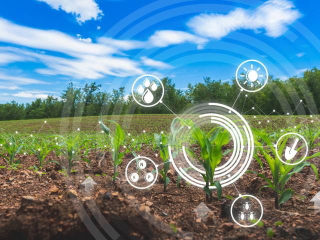 Il futuro dell'industria alimentare tra sfide e opportunità