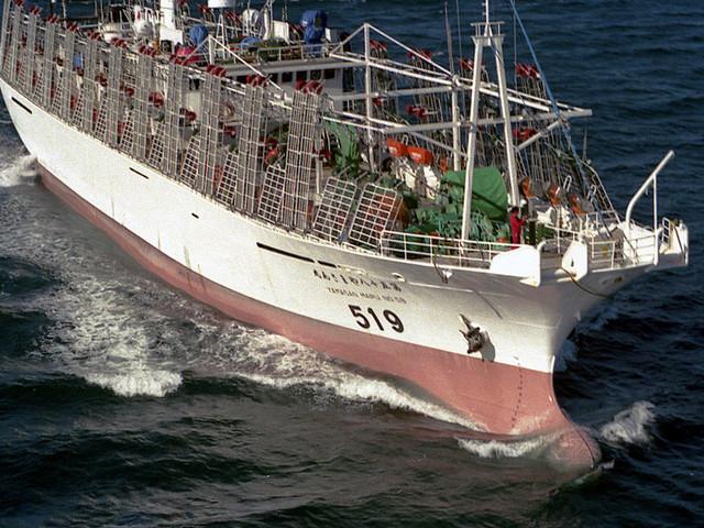 Pescatori nordcoreani uccidono il loro comandante e 16 membri dell'equipaggio