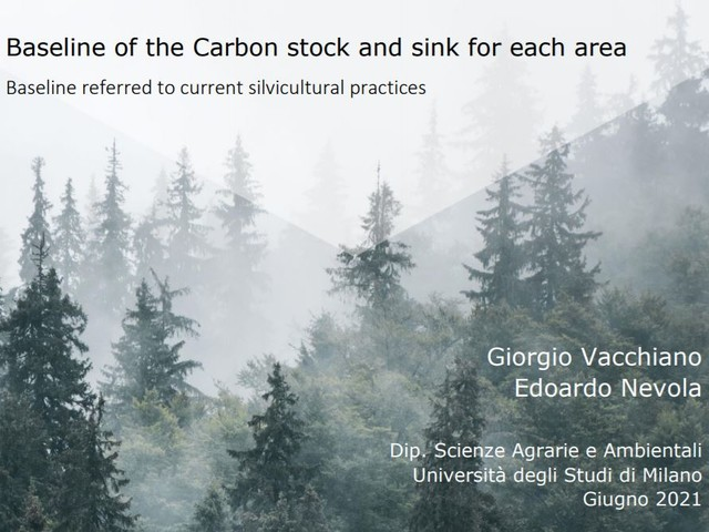 Foreste italiane a rischio. Situazioni gravissime, che peseranno per anni sulla collettività e l'ambiente