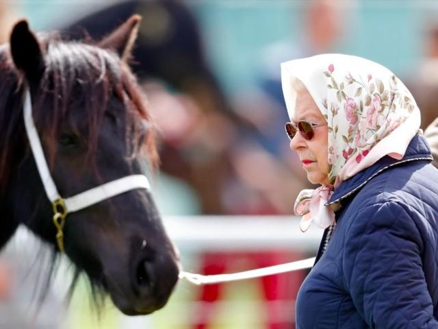 La regina Elisabetta va a cavallo ogni giorno (a 94 anni) per «tornare più forte di prima»